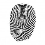 sample fingerprint